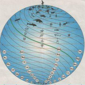 Понятие о живых системах Биосферы